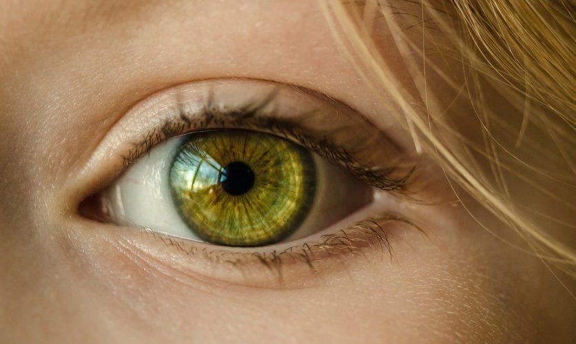 黃斑病變是如何導致的